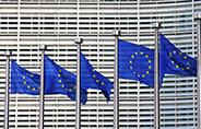 Bild: eufom: Europäische Union